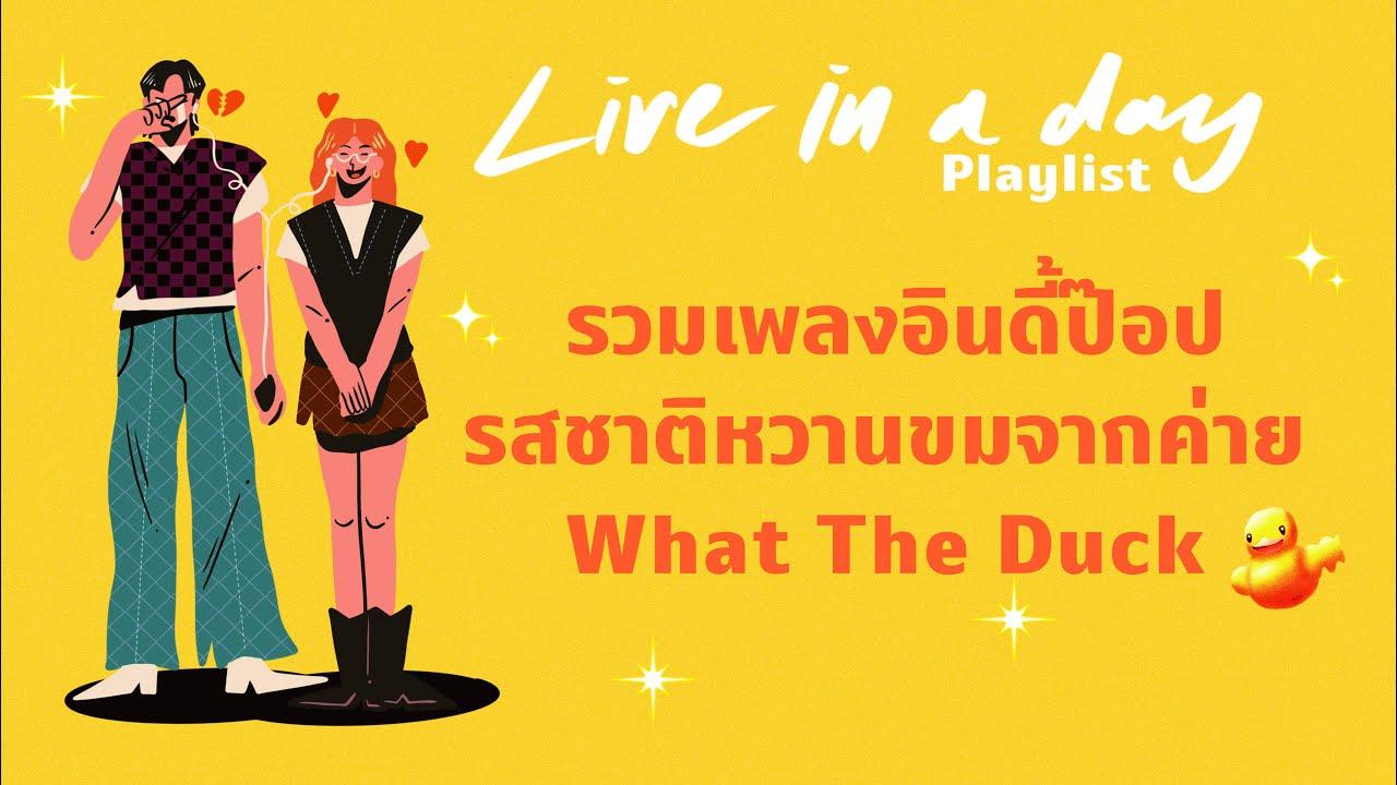 รวมเพลงอินดี้ป๊อปรสชาติหวานขมจากค่าย What The Duck   Live in a day Playlist