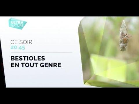 Vidéo Voix de la Chaine Ultra Nature - Marilyn HERAUD