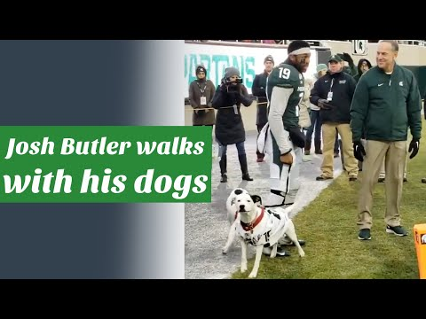 Brody - College Football Star walks with his adopted dogs on senior day