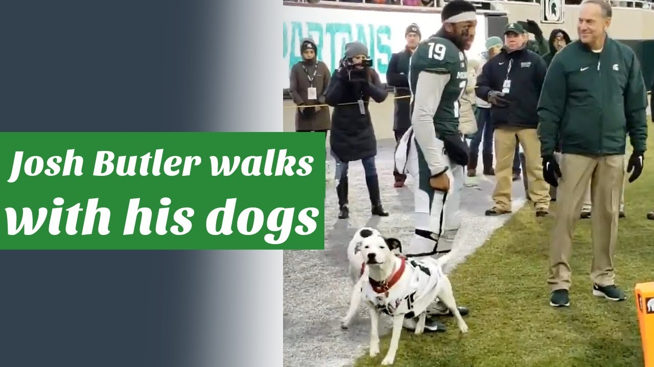 Michigan State CB Josh Butler walks out with his dogs on ...