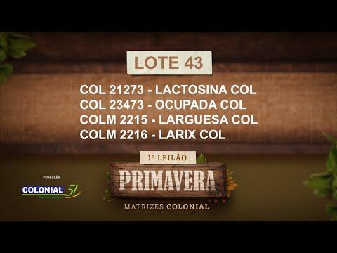 LOTE 43   COL 21273,23473,COLM 2215,2216