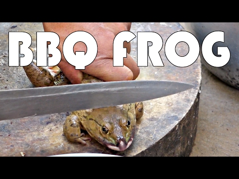 LIFE IN RURAL THAILAND – ISAAN REGION – BBQ FROG