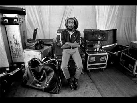 B.Marley & The Wailers   Punky Reggae Party