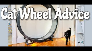 CAT WHEEL: Tips and Tricks