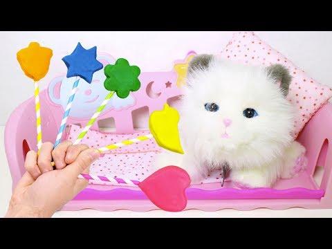 🐱 Little Live Pets 🐱 Le Damos Piruletas A Sleepy Kitty   Juegos Y Juguetes Para Niños