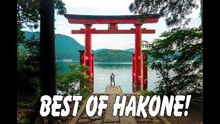 Hakone Free Pass! Watch us do EVERYTHING! Ropeway, Cruise, Railway, and Owakudani!