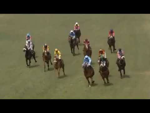 Head on Race 4 Turffontein