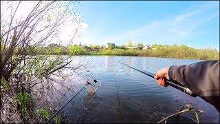 Главное вовремя ПОДСЕЧЬ! Ловля Карася на поплавок. Рыбалка в Июне