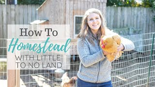 How To Homestead Without Land Or With Little Land - Urban Farming