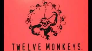 12 monkeys soundtrack (full album)