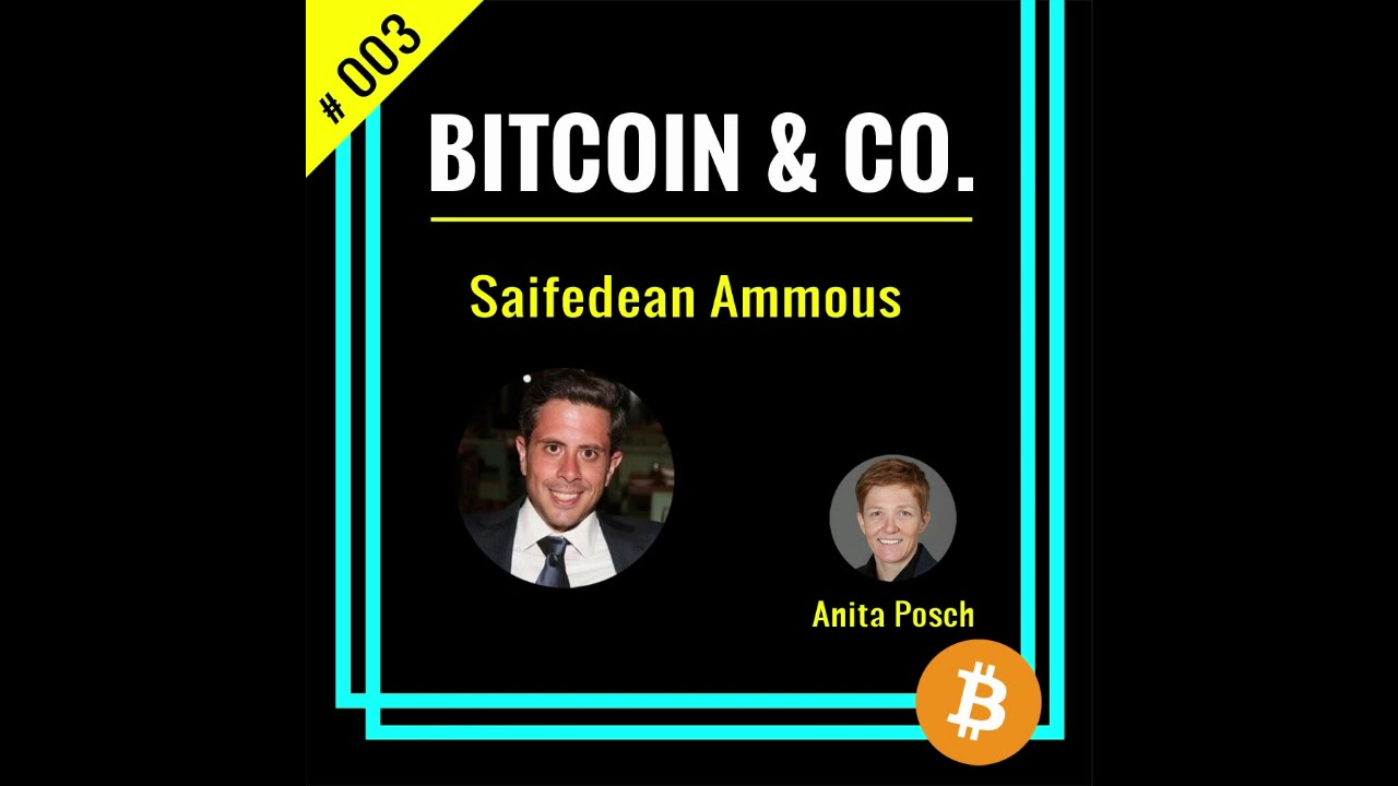 """Saifedean Ammous Author of """"The Bitcoin Standard""""   #003 Podcast Bitcoin & Co. (Audio only ..."""