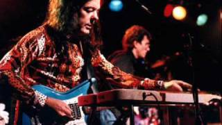 David Lindley - Tu-ber-cu-lucas and The Sinus Blues