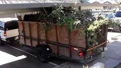 Yard Waste Removal Santa Rosa (707) 922-5654  Green Waste Hauling Disposal Recycling