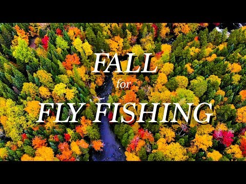 FALL For FLY FISHING: Experience The Adventure At Lopstick, New Hampshire