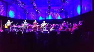 Violent Femmes With The Tasmanian Symphony Orchestra 2018