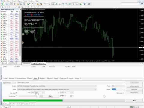 Best trading forex robot 100%
