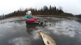 Ловля щуки в февреле на поставушки проездом  (видео-отчет) зимняя рыбалка февраль 2016.