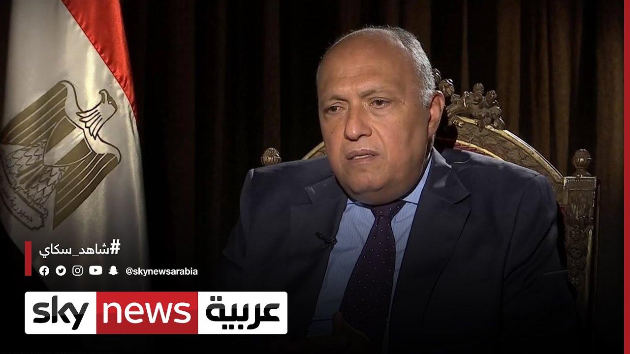 وزيرُ الخارجية المصري ونظيره الجزائري يبحثان سبلَ تطوير العلاقات الثنائية بين البلدين
