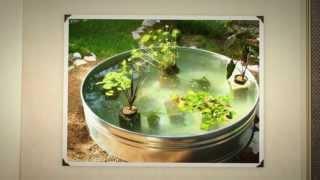 Пруд своими руками. Маленький пруд для рыбок(, 2014-07-22T18:38:43.000Z)