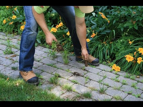 How to Remove Weeds from Your Paving Stones and Install EnviroSAND