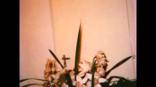 Monitor - Herb Lane Theme