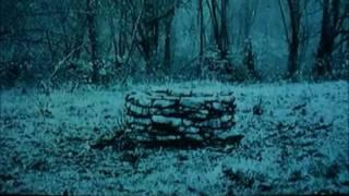 The Ring-Samara