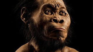 Scientists Discover New Ancient Human Species