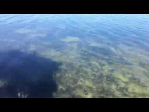 Lower Laguna Madre beautiful clear water