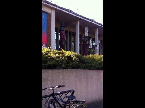 Burke Museum totem poles