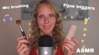 ASMR Mic Brushing & Tapping 😴 (Nederlands)