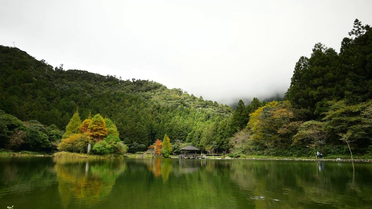 宜蘭明池湖-落羽松(2) - YouTube