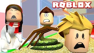 ROBLOX PET ESCAPE w/ Gamer Chad & Dollastic Plays! | MicroGuardian