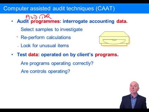 Computer Assisted Audit Techniques - ACCA Audit And Assurance (AA)