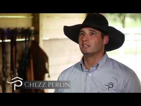 Rafter P Horse Training - About Us