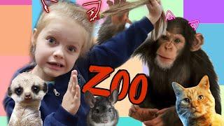 Настя в зоопарке. Часть 2