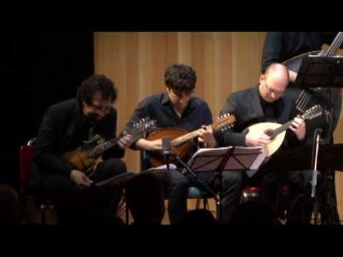 Ger Mandolin Ensemble 2011