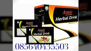 agaric herbal drink nasa solusi untuk penyakit dalam hub 085640435503