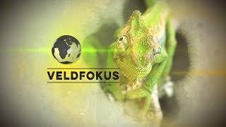Veldkfokus season 9 episode 37