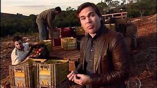Globo Repórter Deperdício de alimentos (Completo) HD