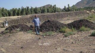 inilah tanah gosong yang disebut dalam quran surat al qolam