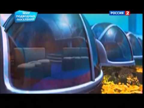 Мир подводных поселений.