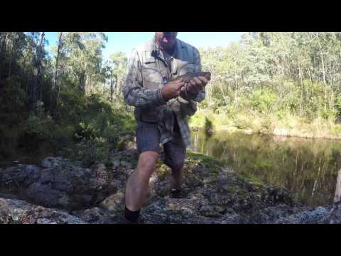 Canberra Trout March 2017 Final