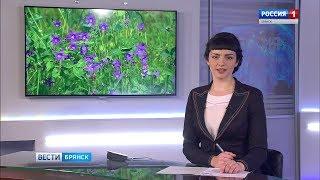 """""""Вести. Брянск"""". (эфир 21.06.2017 в 20:45)"""