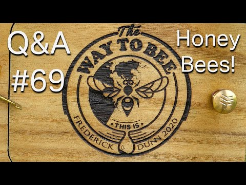 Backyard Beekeeping Questions And Answers 69 Let's Talk About Honey Bees
