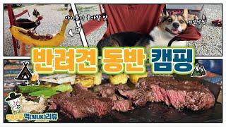반려견 밤이와 함께 하는 캠핑 먹(Muk)부림! / 한…