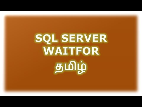 WAITFOR DELAY | TIME in SQL Server Tamil