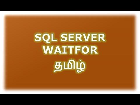 WAITFOR DELAY | TIME In SQL Server Tamil