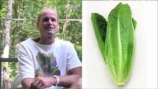 """Зелень на сыроедении. Есть или не есть? Доктор Дуглас Грэм, автор книги """"Диета 80/10/10""""."""