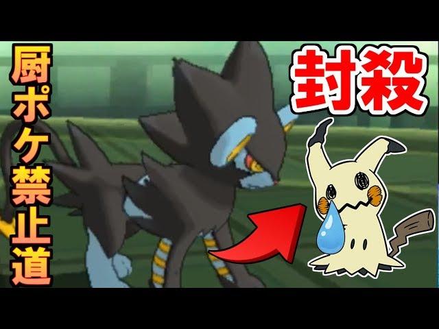 【ポケモンUSUM】使用率1位のミミッキュを倒せる神ポケを見つけた!【厨ポケ禁止道】