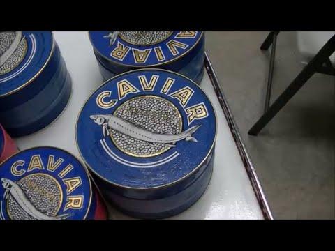 Atlantic Caviar & Sturgeon | SmartKitchen.com